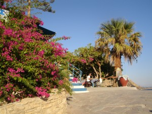 Pakketreis Kreta